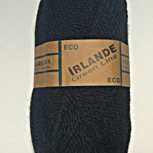 irlande 62 must.jpg